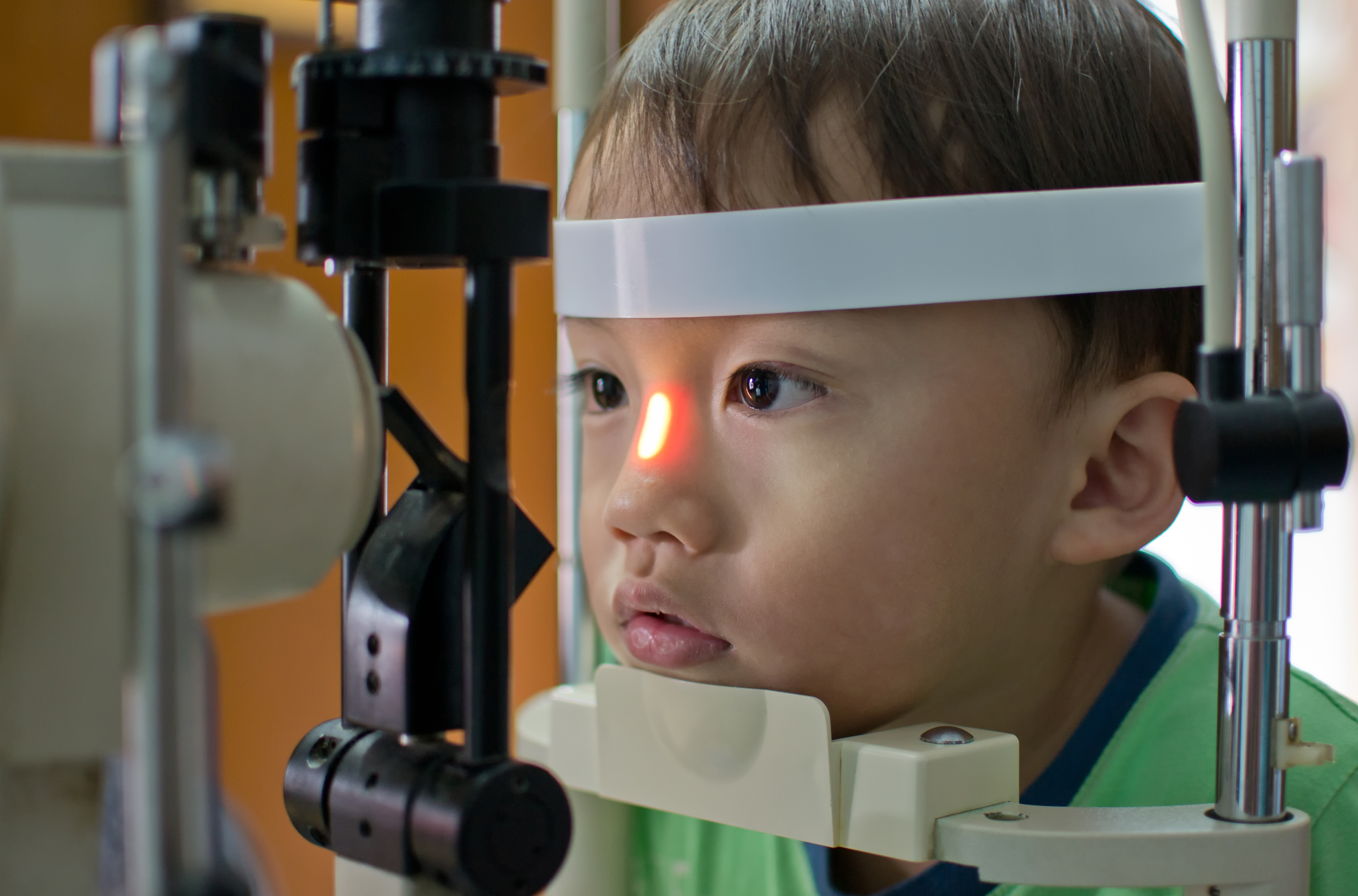 Using Cells From The Mouth To Cure Blindness Faculty Of