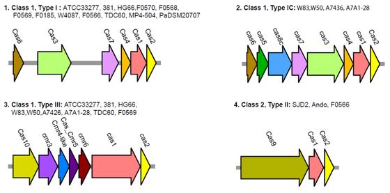 Bildet kan inneholde: tekst, diagram, linje, plott, parallell.