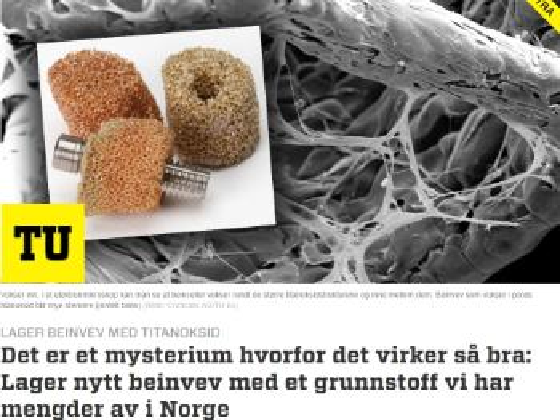 """FAksimilie fra nettartikkel i Teknisk ukeblad, et mikroskopbilde med tittelen """"DEt er et mysterium hvorfor det virker så bra: Lager nytt beinvev med et grunnstoff vi har mengder av i Norge"""""""
