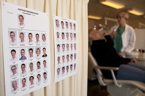 mandatet til det odontologiske fakultet